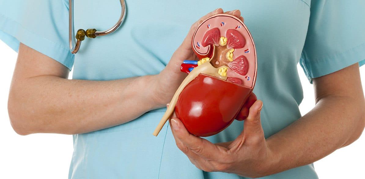 La hipertensión arterial secundaria de origen renal es menos frecuente que la esencial, pero tiene una gran repercusión en la conducción