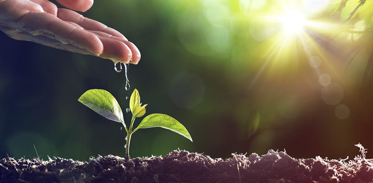 Innovaciones para proteger recursos fundamentales en la agricultura