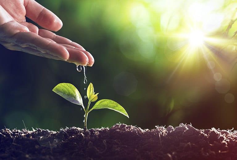 Agua y tierra: Innovaciones para proteger recursos fundamentales en la agricultura